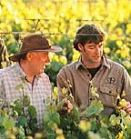 http://www.brooklandvalley.com.au/ - Brookland Valley - Top Australian & New Zealand wineries