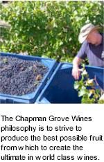 About Chapman Grove Wines