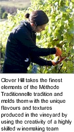 More on the Clover Hill Winery