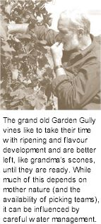 About the Garden Gully Winery