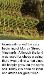 About Murray Street Winery