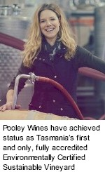 About Pooley Wines