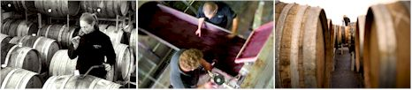 http://www.yering.com/ - Yering Station - Top Australian & New Zealand wineries