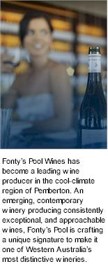 More on the Fontys Pool Winery