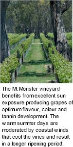 More About Mount Monster Wines