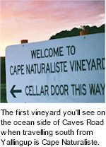 More on the Cape Naturaliste Winery
