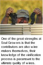 More About Soul Growers Winery