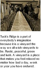 About Tucks Ridge Winery