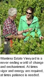 About Wantirna Estate Winery