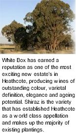 More About White Box Wines
