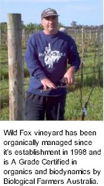 About Wild Fox Wines