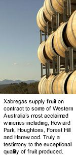 More on the Xabregas Winery