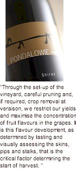 More on the Pondalowie Winery